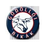 Gödöllői SK